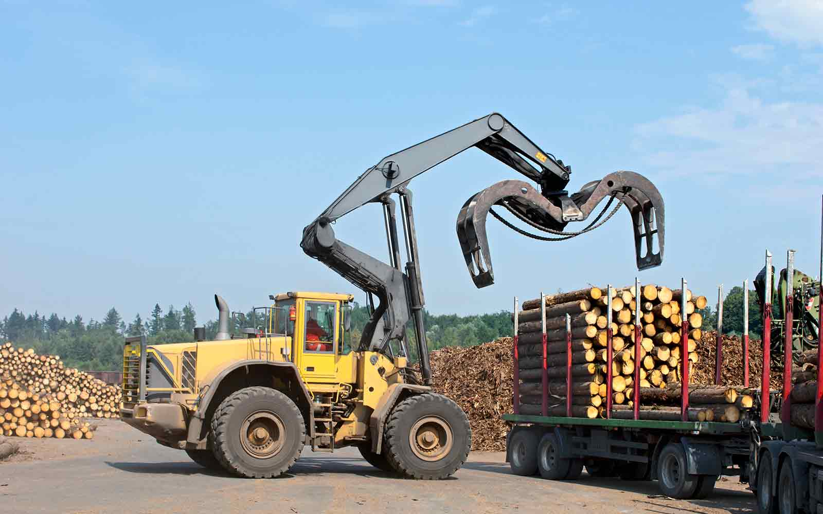 Forestry Equipment Leasing | Balboa Capital