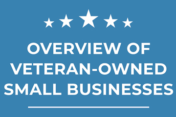 veteran business owners infographic preview